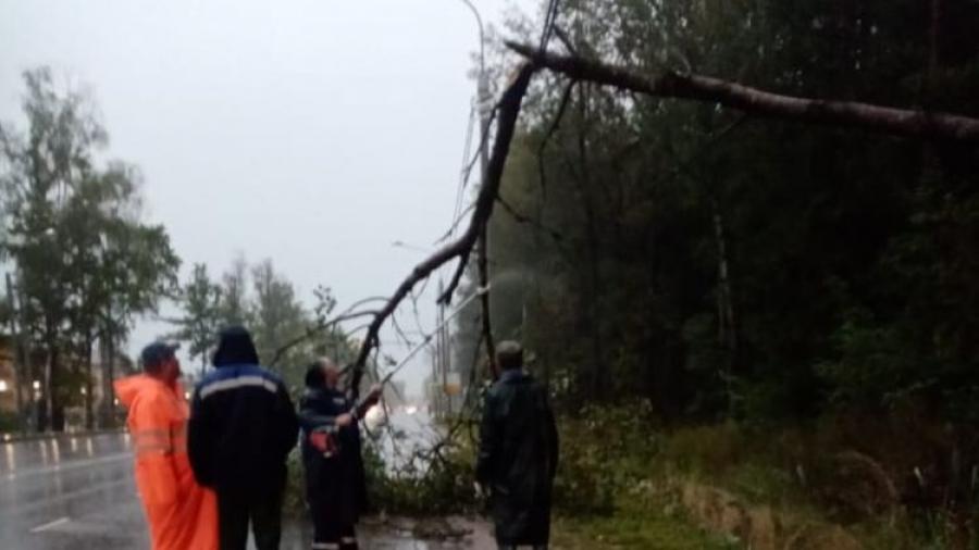 Последствия вчерашней стихии оперативно устранены