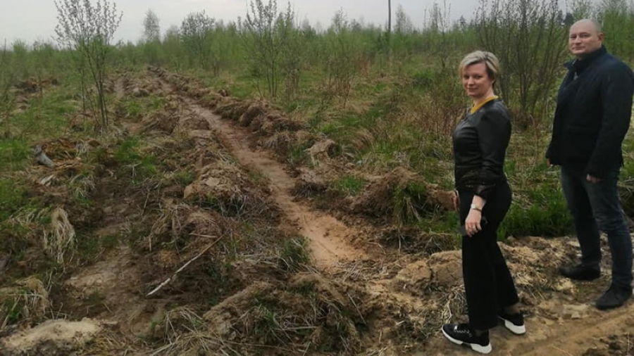 В пригороде наукограда появится хвойный лес в виде атома